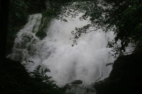 清竜の瀧7-80.jpg